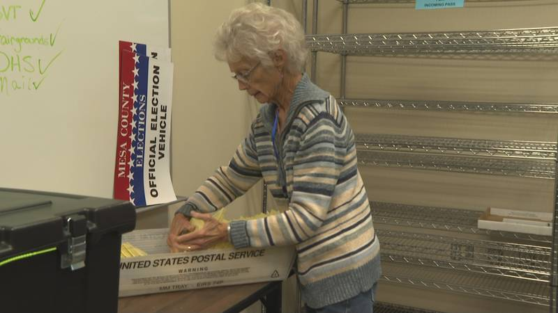Mesa County elections
