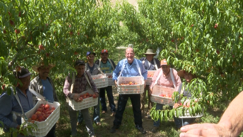 Governor Polis takes picture with peach orchard workers