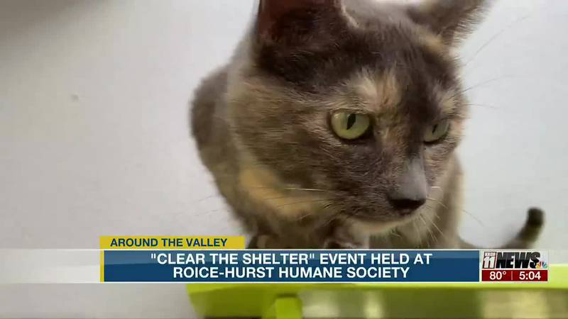 """""""Clear the Shelter"""" Event Held at Roice-Hurst Humane Society"""