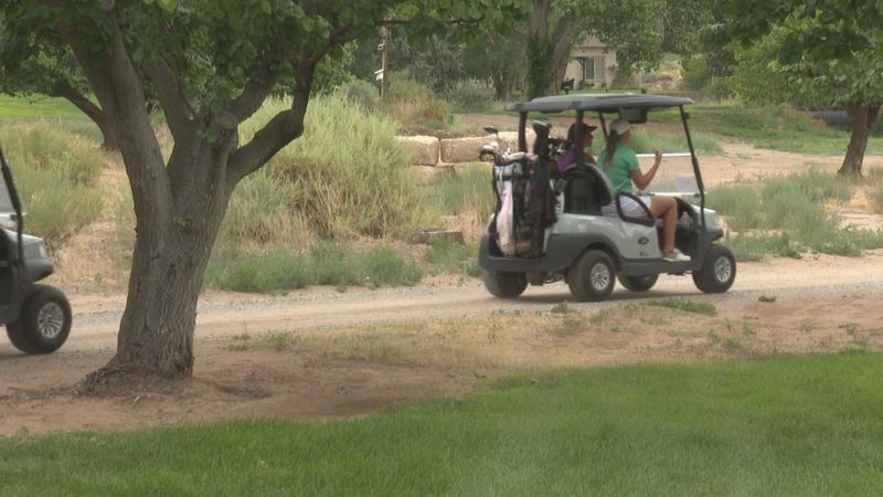 Over 100 women come to golf and raise money for domestic violence