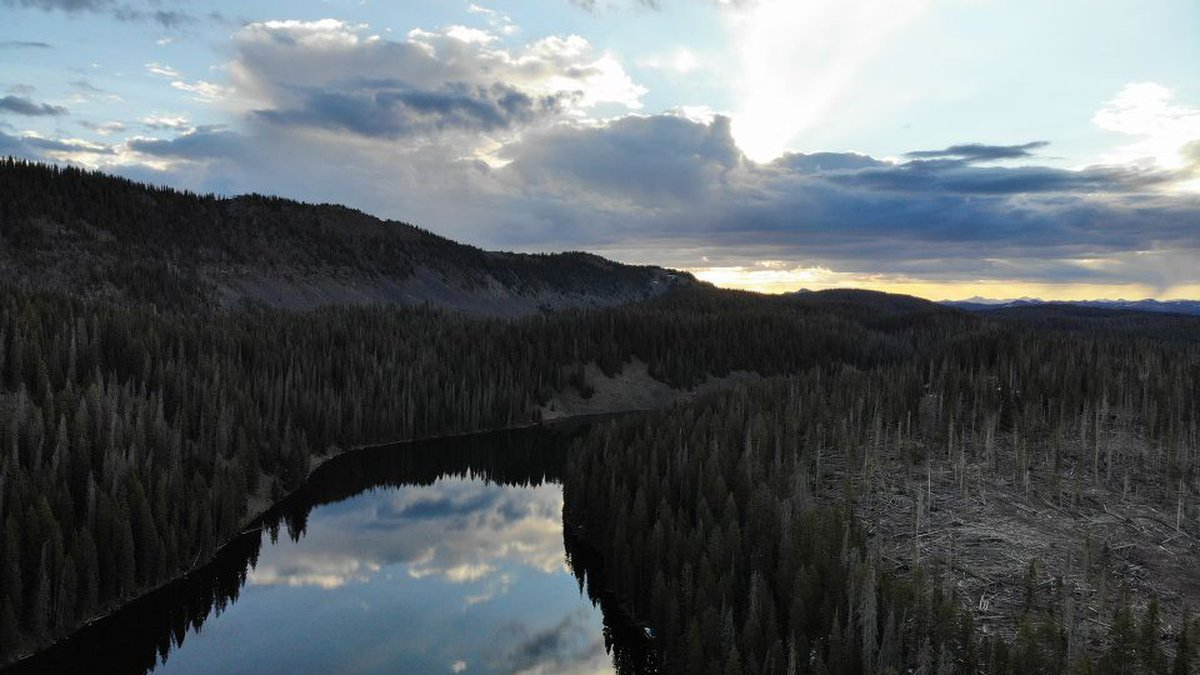 Grand Mesa, Uncompahgre, and Gunnison (GMUG) National Forests along with the BLM Tres Rios and...