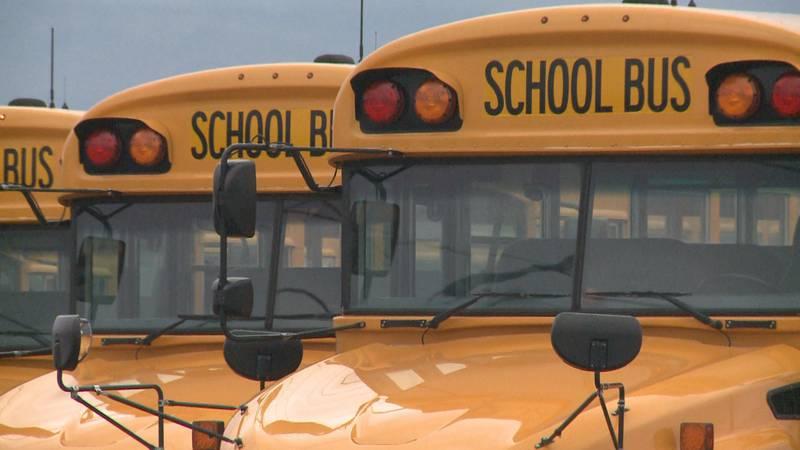 D51 school buses