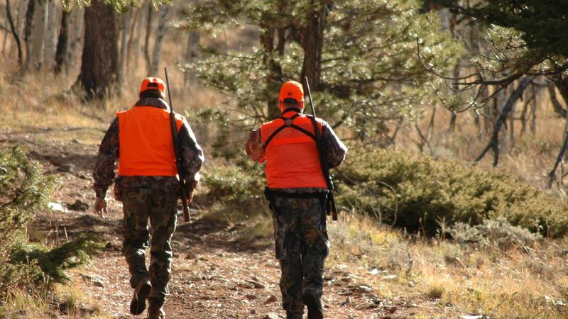 Colorado Parks and Wildlife reminds hunters they aren't immune from COVID-19.
