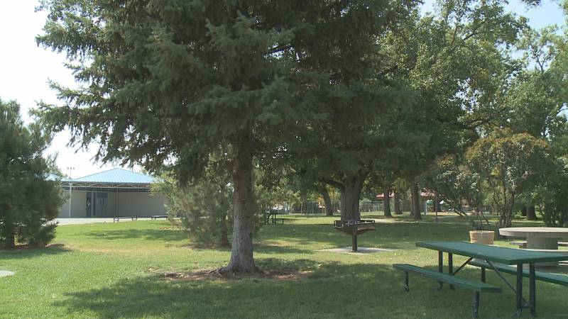The City of Grand Junction is taking proactive steps the reduce harm to the urban tree canopy.