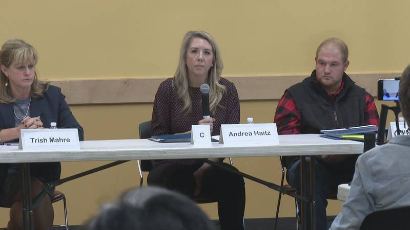 The District C candidates, pictured above from left to right, are Trish Mahre, Andrea Haitz,...