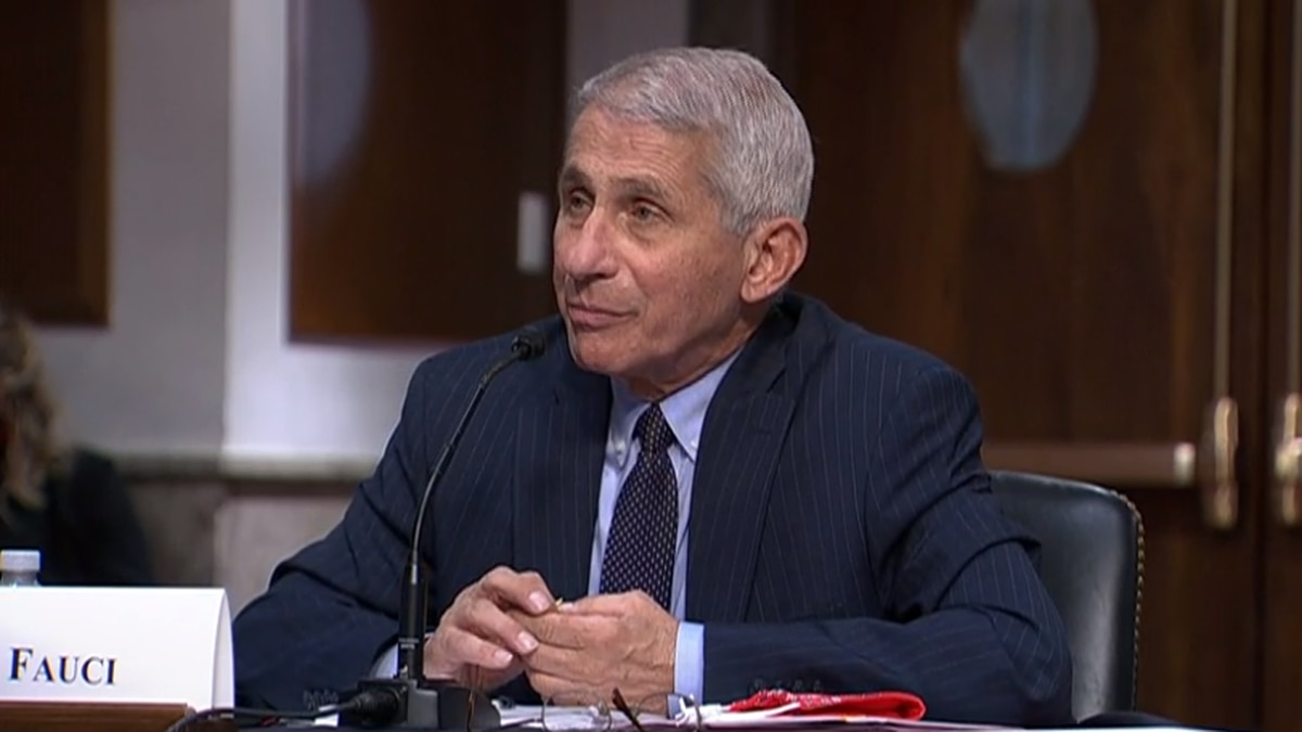 Fauci: 'Would not be surprised' by 100,000 daily virus cases in US