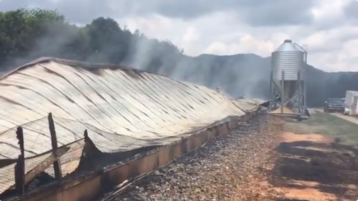 A fire overnight destroyed a 450-foot long chicken house building and killed about 11,000...