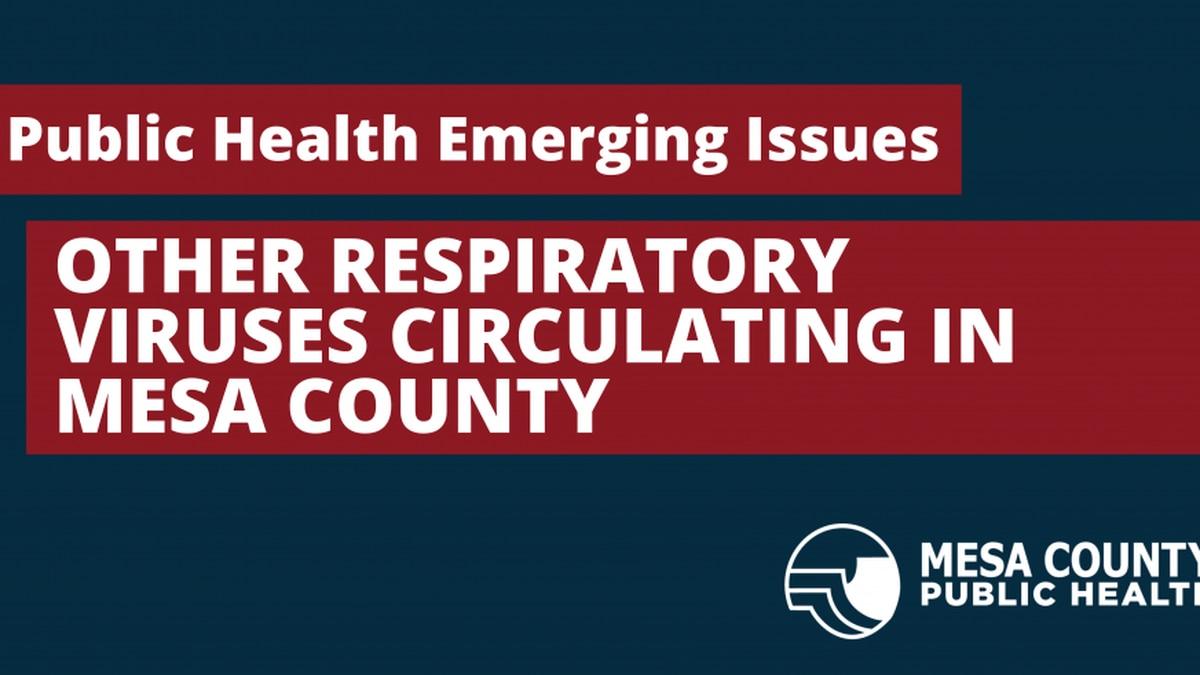Other Respiratory Viruses Circulating in Mesa County