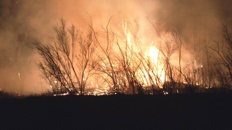 A small brush fire breaks out overnight burning 7 to 10 acres